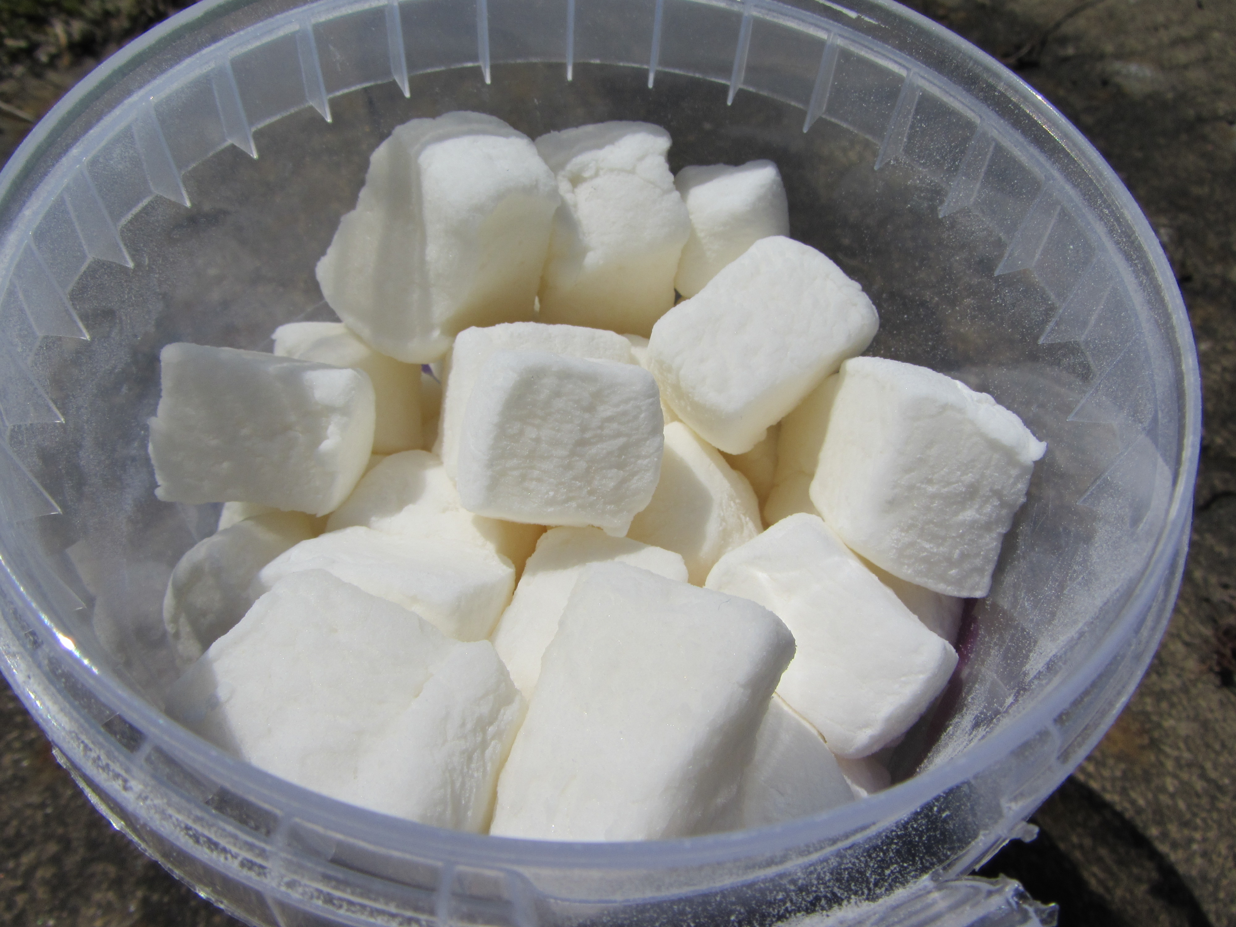 Vegan Marshmallows! – Lucy's Friendly Foods