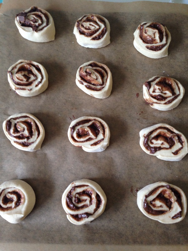 chocolate/cocoa swirl buns ready to cook