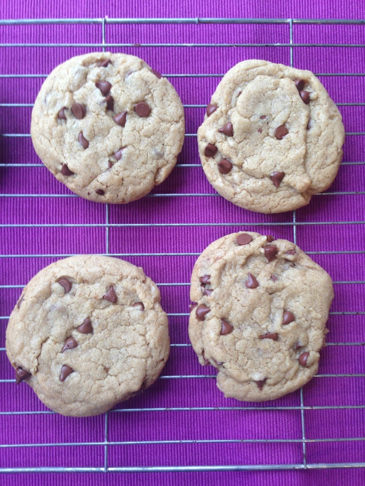 nut-free vegan chocolate chip cookies