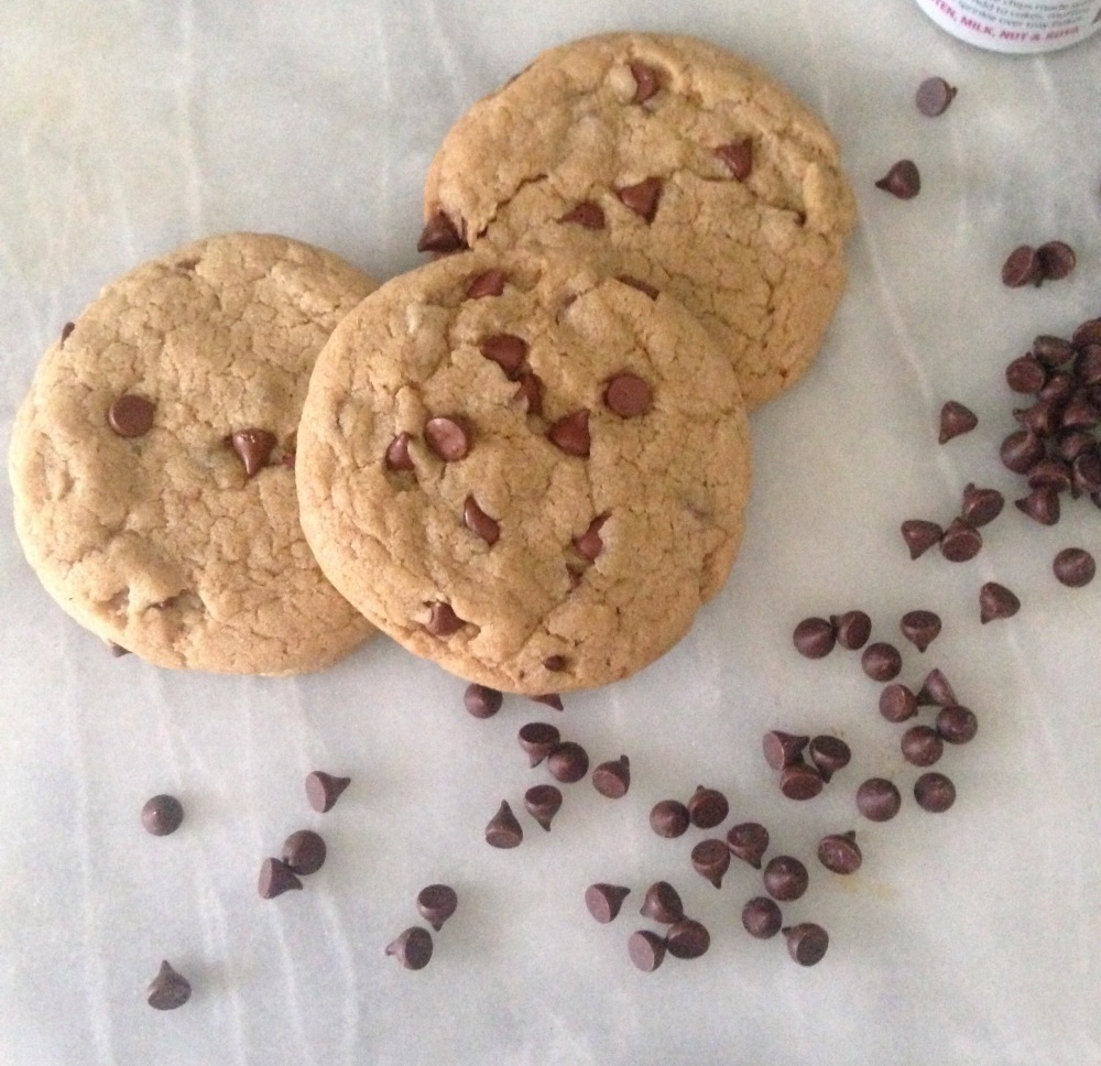 dairy-free, egg-free chocolate chip biscuits