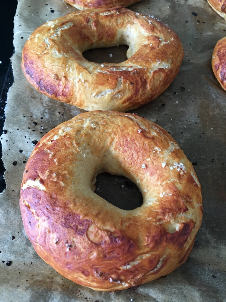 egg-free nut-free bagels, marmite flavour